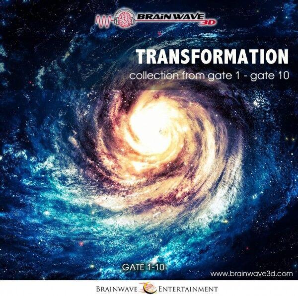 Transformation Bundle